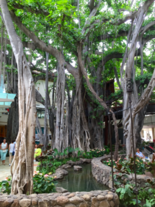 Banyan Tree International Marketplace