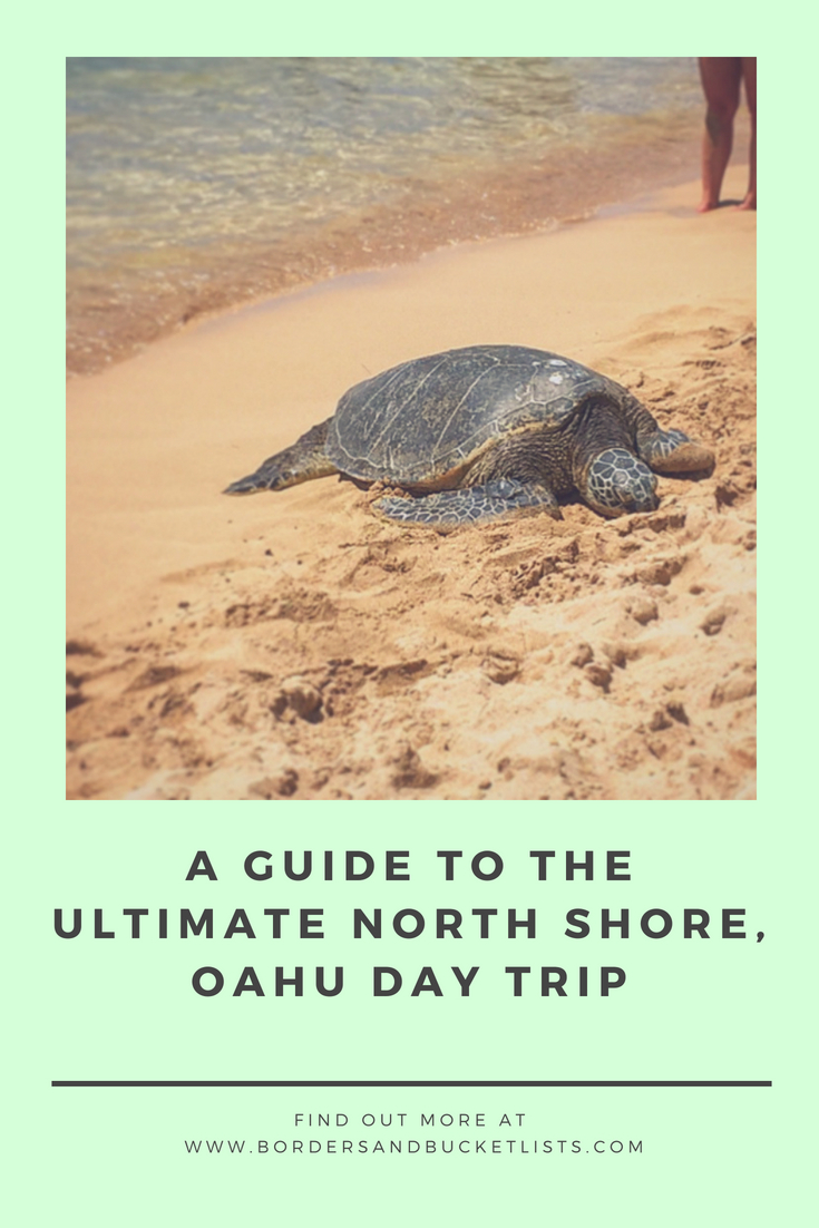Guide to the Ultimate North Shore, Oahu Day Trip