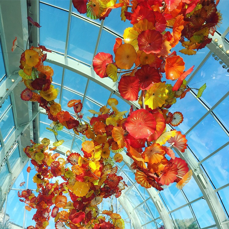 My Favorite Things to do in Seattle Art Chihuly Glass