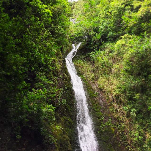 Hike to Lulumahu Falls