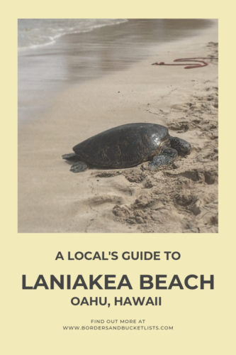 A Local's Guide to Laniakea Beach, Oahu, Hawaii #turtles #turtlebeach #laniakeabeach #oahu #hawaii
