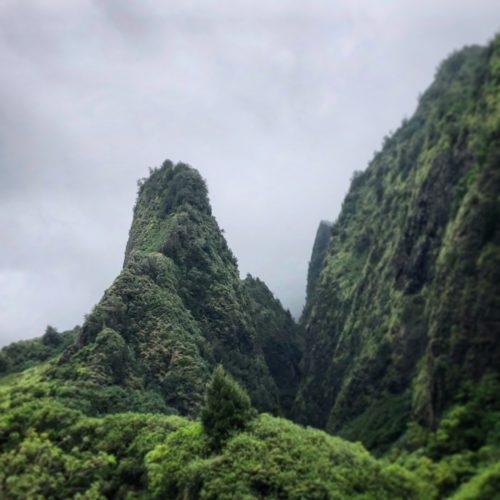 Find the Secret Trails at Iao Valley