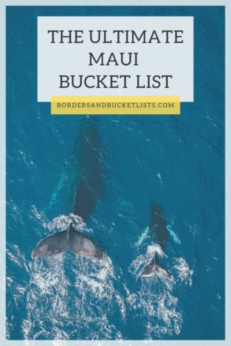 The Ultimate Maui Bucket List #maui #hawaii #bucketlist