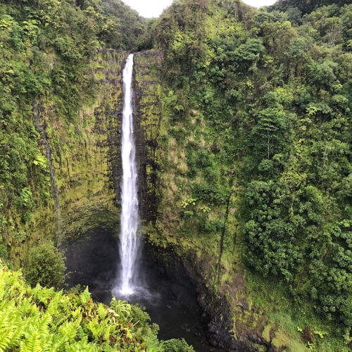 Hilo Waterfalls Opener