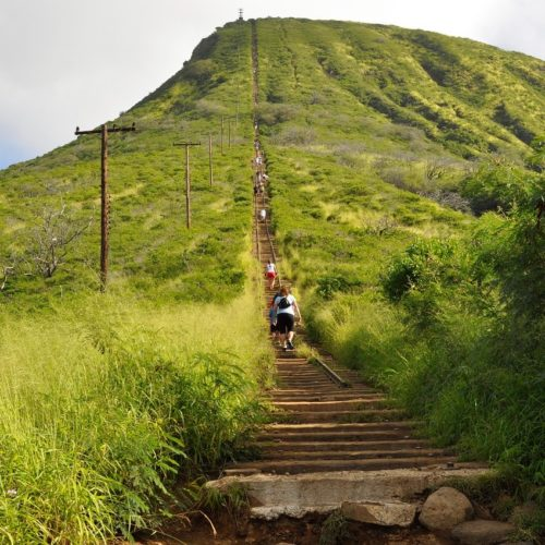 green koko head hike trail