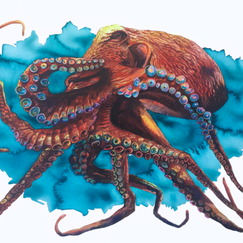 painting of orange octopus in front of large blue ink splatter
