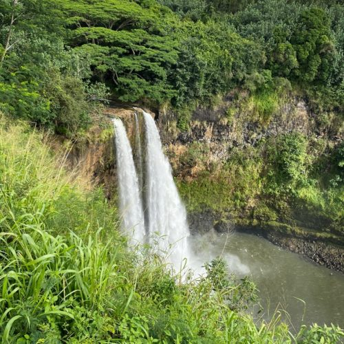 waterfall cascading into pond surrounded by greenery thing to do on Kauai Wailua Falls